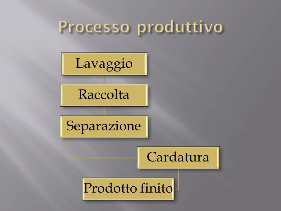 Processo produttivo Lavaggio Raccolta Separazione Cardatura