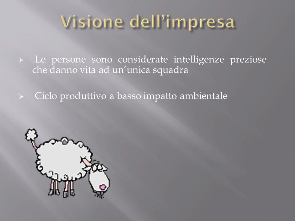 Visione dell'impresa Le persone sono considerate intelligenze preziose che danno vita ad un'unica squadra.