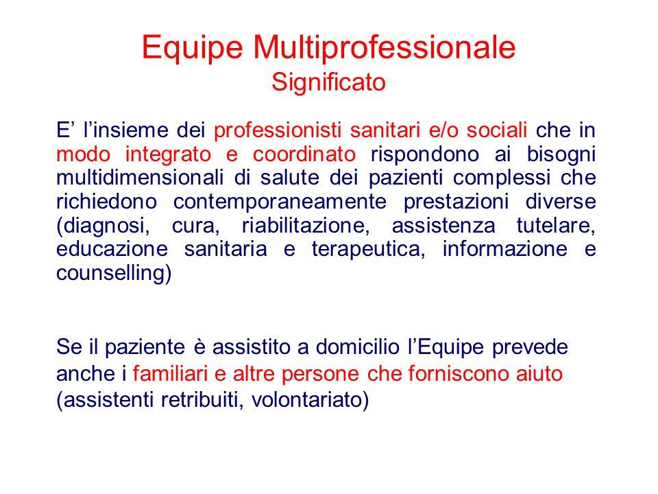 Equipe Multiprofessionale Significato