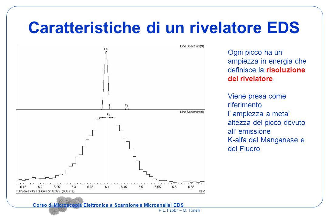 Caratteristiche di un rivelatore EDS