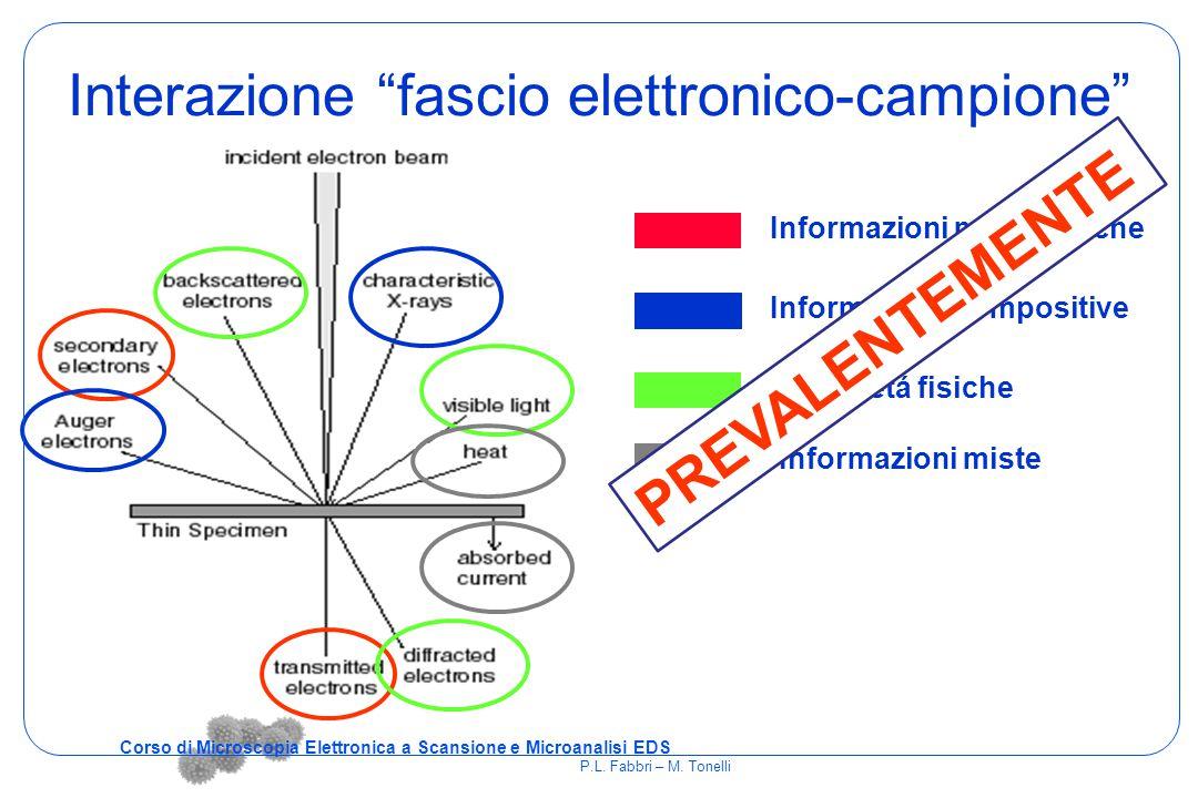 Interazione fascio elettronico-campione