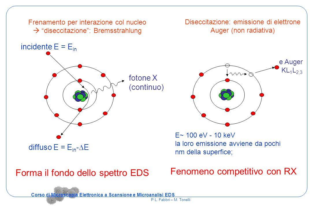 Corso di Microscopia Elettronica a Scansione e Microanalisi EDS