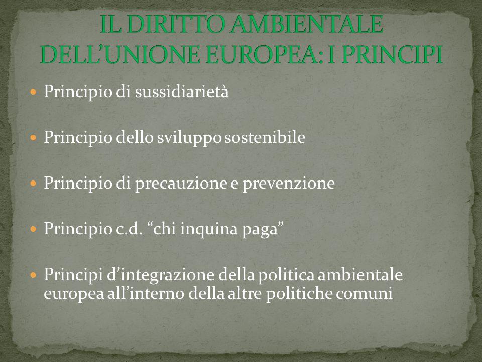 IL DIRITTO AMBIENTALE DELL'UNIONE EUROPEA: I PRINCIPI
