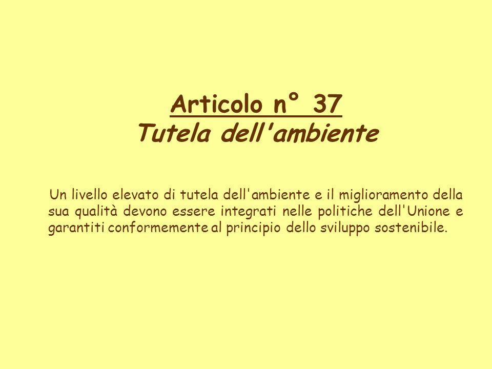 Articolo n° 37 Tutela dell ambiente