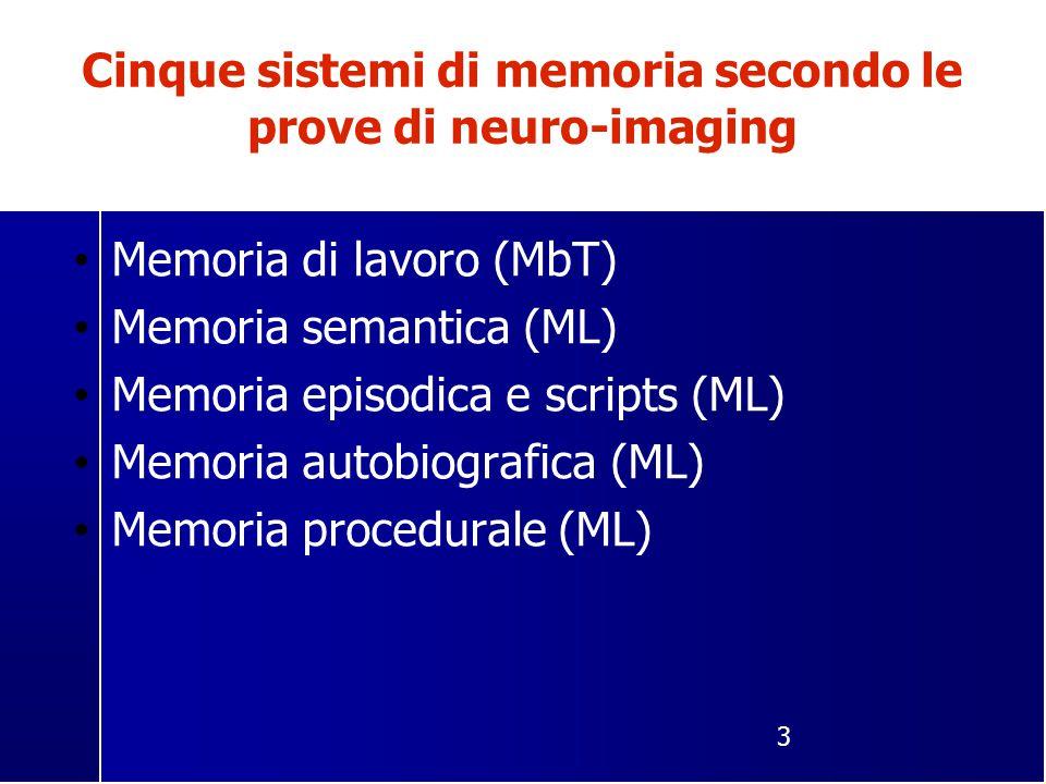 Cinque sistemi di memoria secondo le prove di neuro-imaging