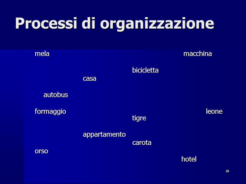 Processi di organizzazione