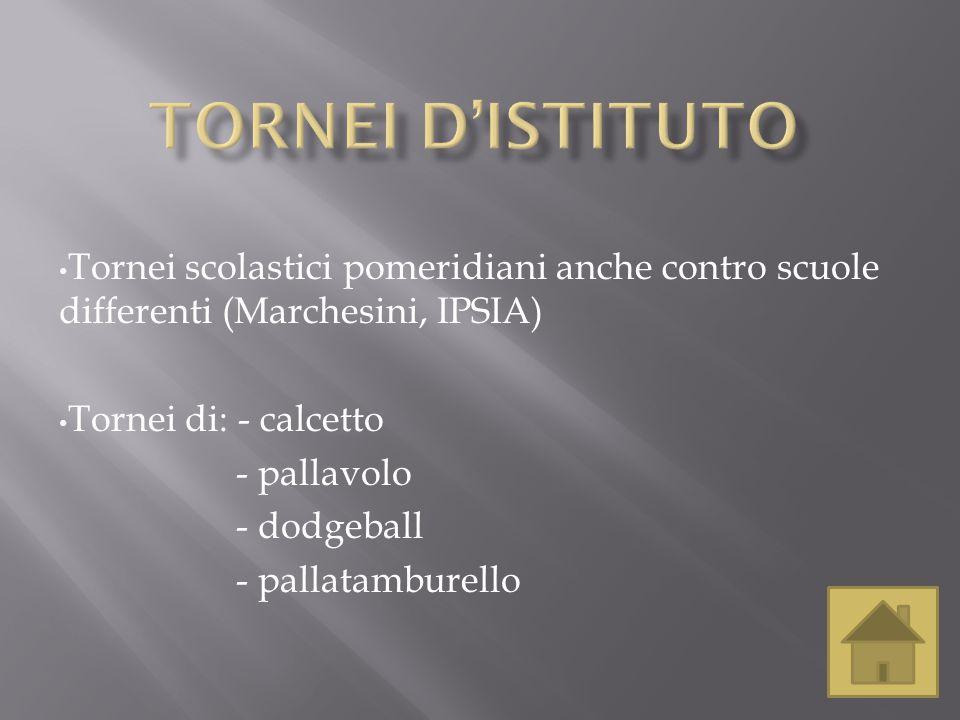 Tornei d'istituto Tornei scolastici pomeridiani anche contro scuole differenti (Marchesini, IPSIA) Tornei di: - calcetto.