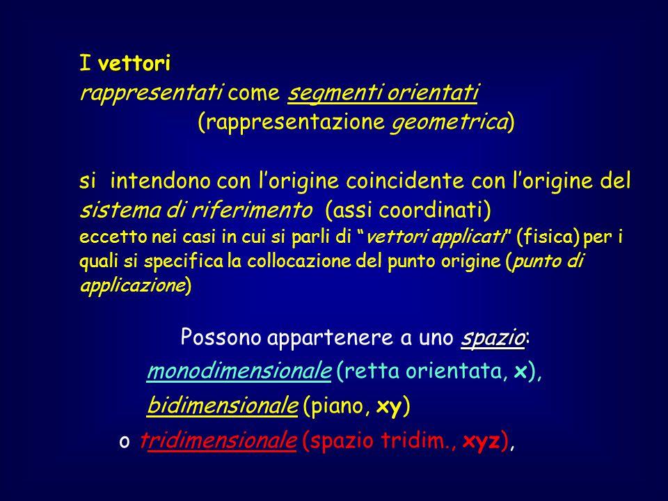 rappresentati come segmenti orientati (rappresentazione geometrica)