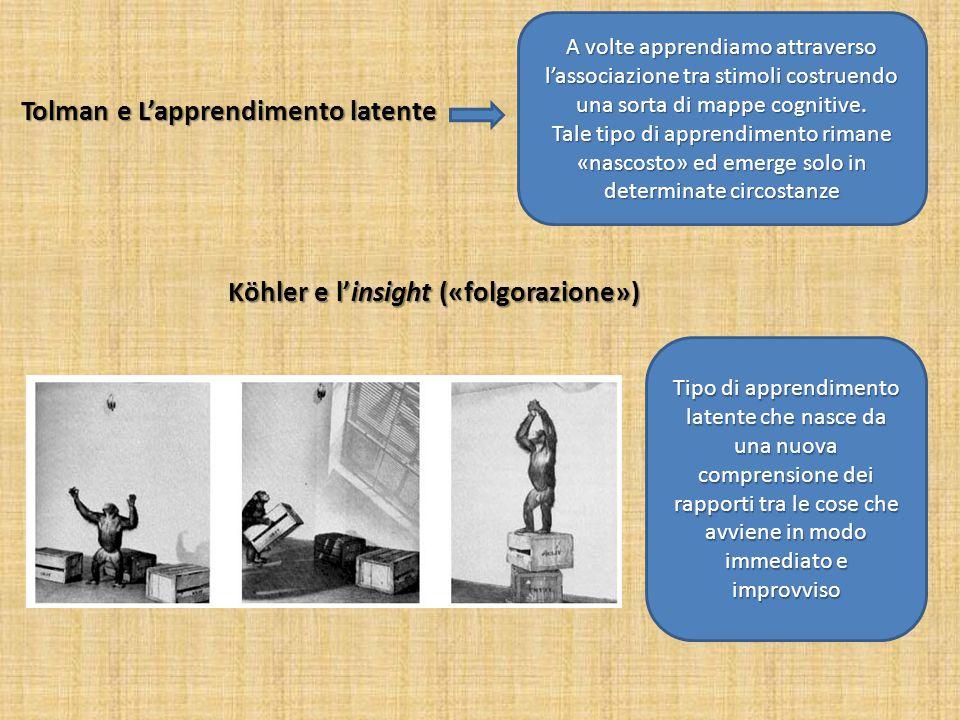 Köhler e l'insight («folgorazione»)