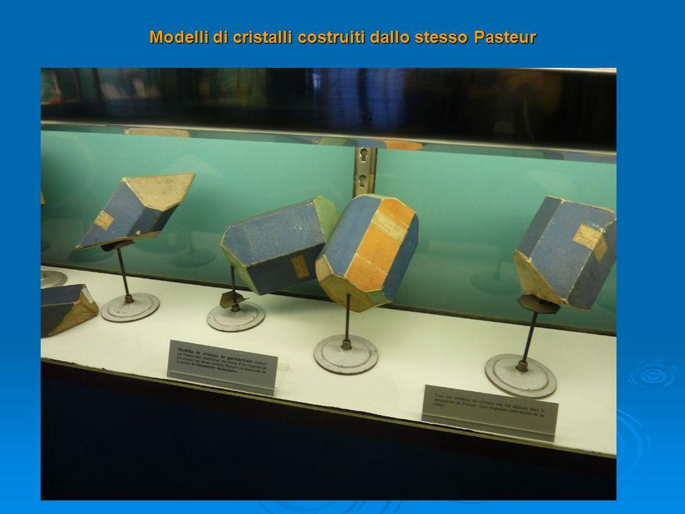 Modelli di cristalli costruiti dallo stesso Pasteur