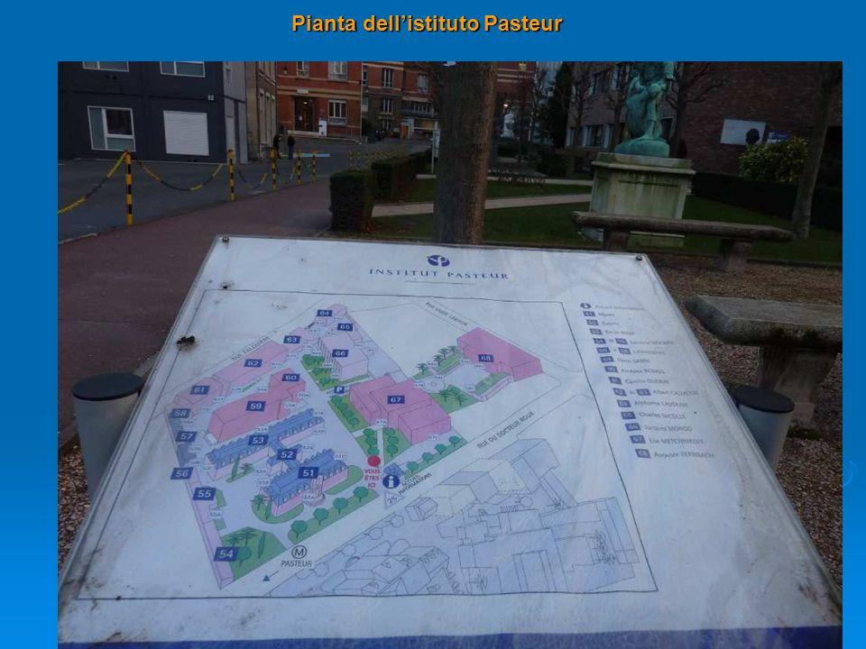 Pianta dell'istituto Pasteur