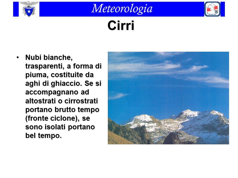 Cirri