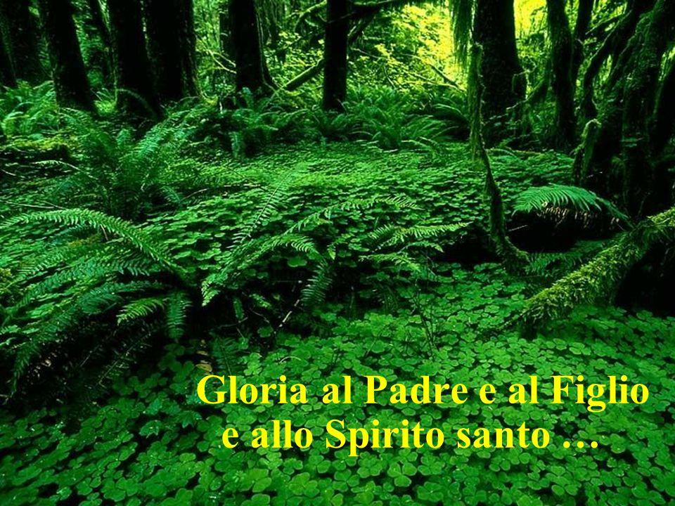 Gloria al Padre e al Figlio e allo Spirito santo …