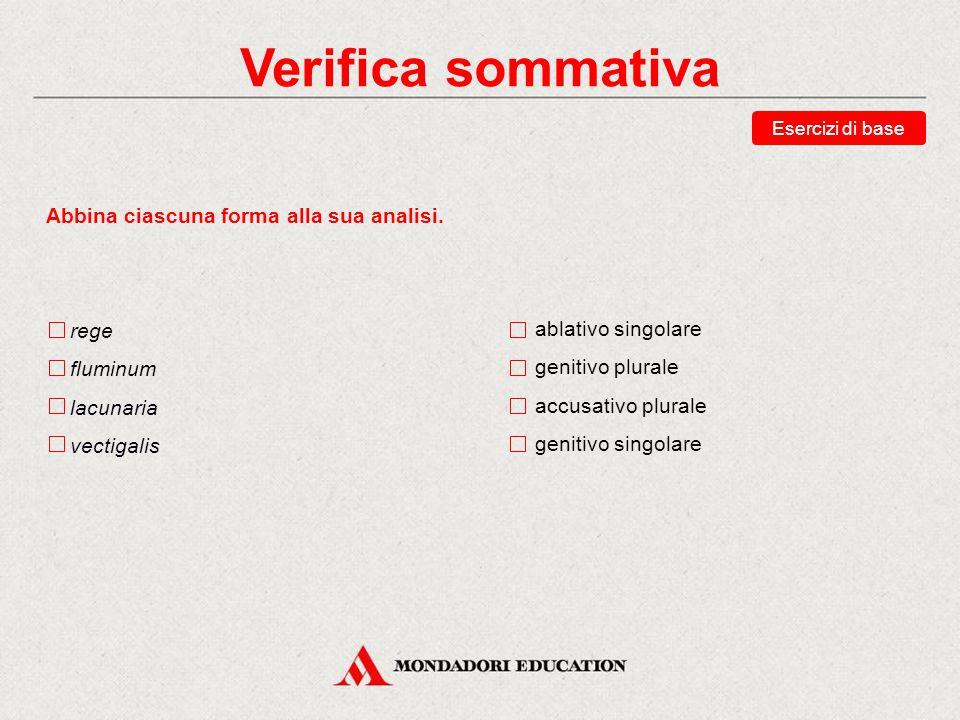 Verifica sommativa Abbina ciascuna forma alla sua analisi. rege