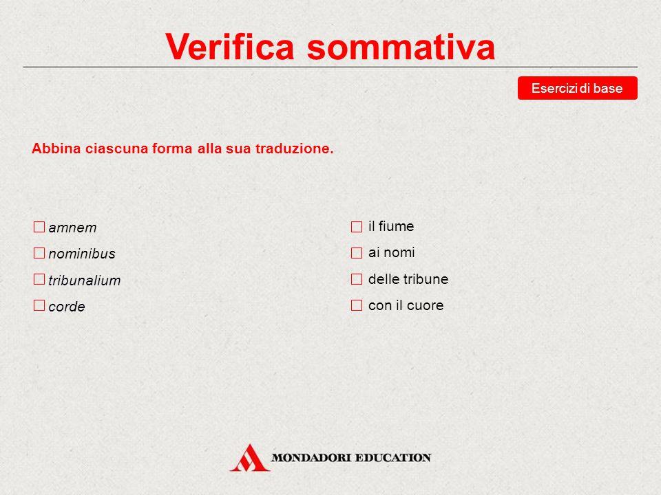Verifica sommativa Abbina ciascuna forma alla sua traduzione. amnem