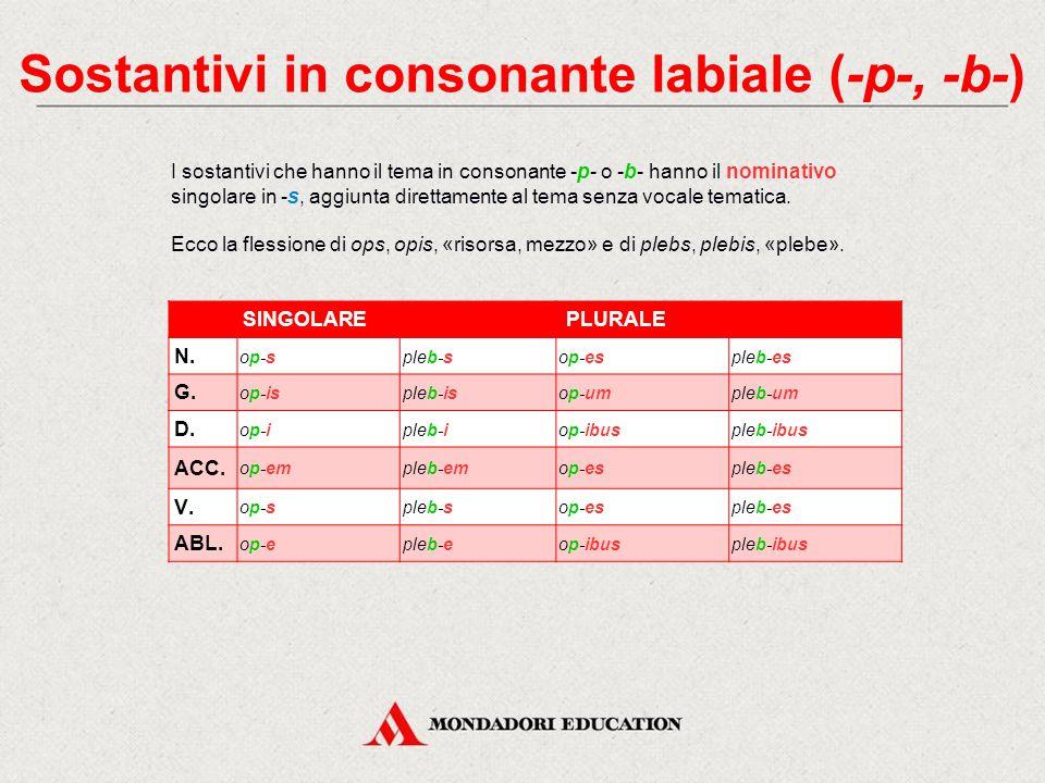 Sostantivi in consonante labiale (-p-, -b-)