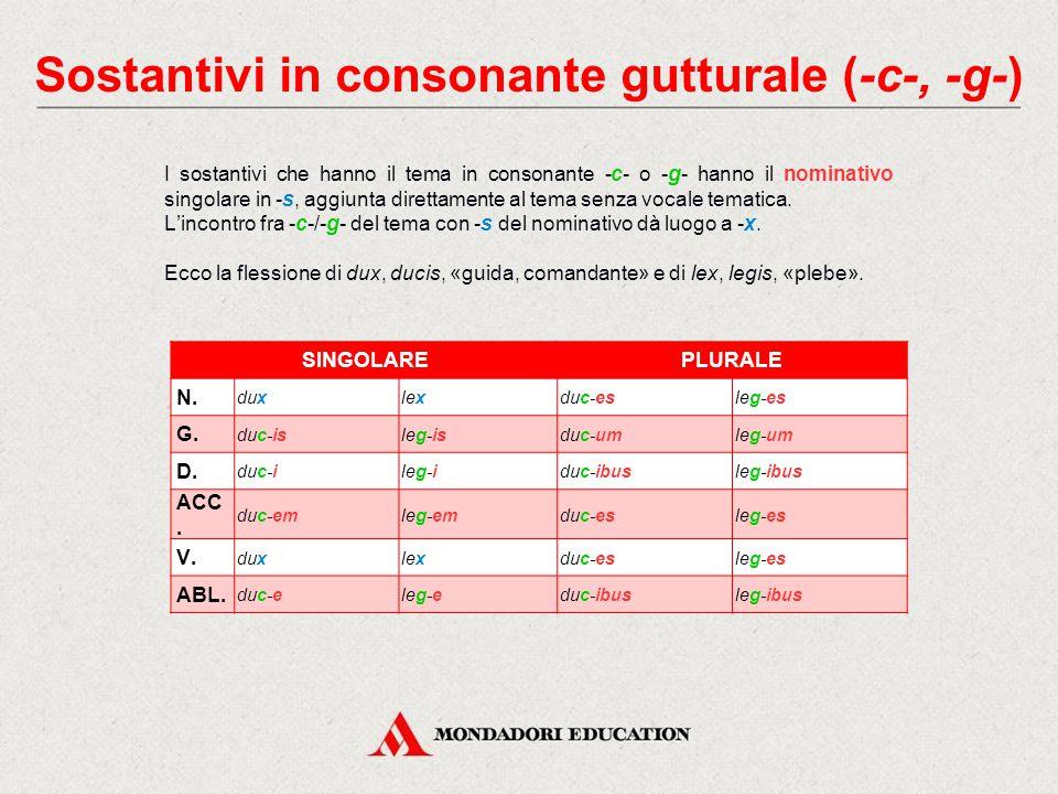 Sostantivi in consonante gutturale (-c-, -g-)