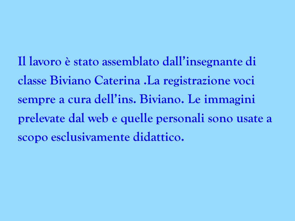 Il lavoro è stato assemblato dall'insegnante di classe Biviano Caterina .La registrazione voci sempre a cura dell'ins.