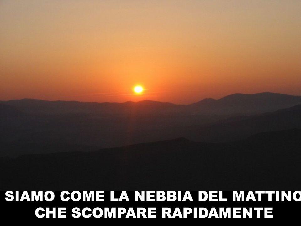 SIAMO COME LA NEBBIA DEL MATTINO CHE SCOMPARE RAPIDAMENTE