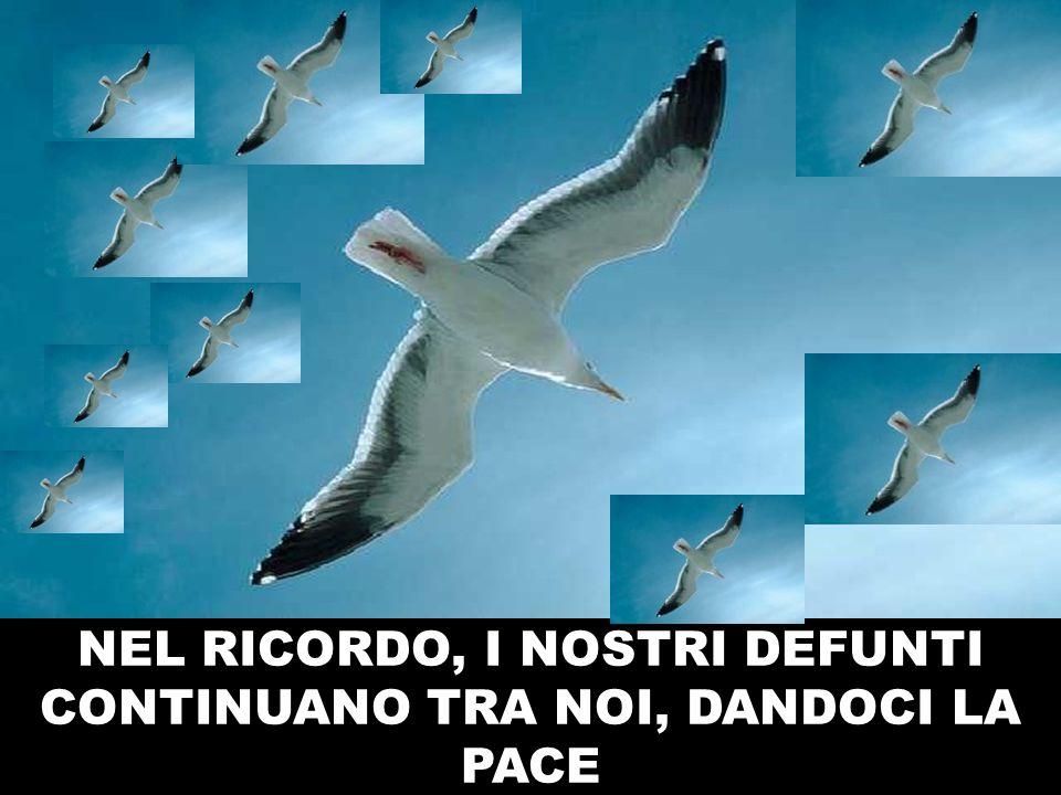 NEL RICORDO, I NOSTRI DEFUNTI CONTINUANO TRA NOI, DANDOCI LA PACE