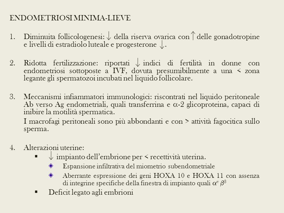 ENDOMETRIOSI MINIMA-LIEVE