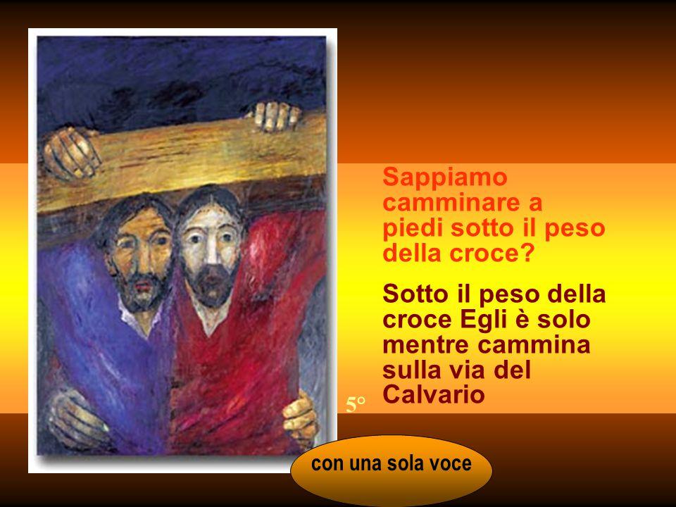Sappiamo camminare a piedi sotto il peso della croce