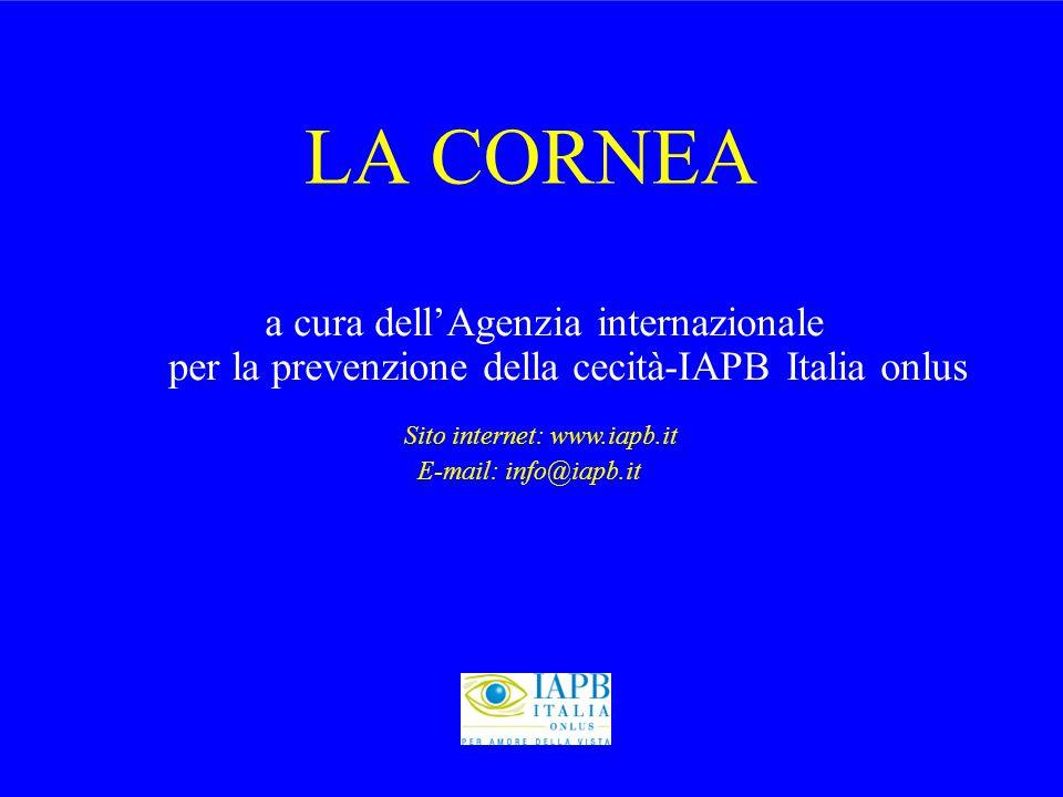 LA CORNEA a cura dell'Agenzia internazionale per la prevenzione della cecità-IAPB Italia onlus.