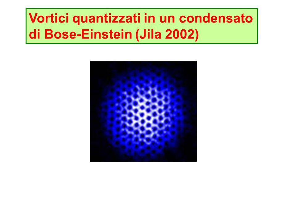 Vortici quantizzati in un condensato