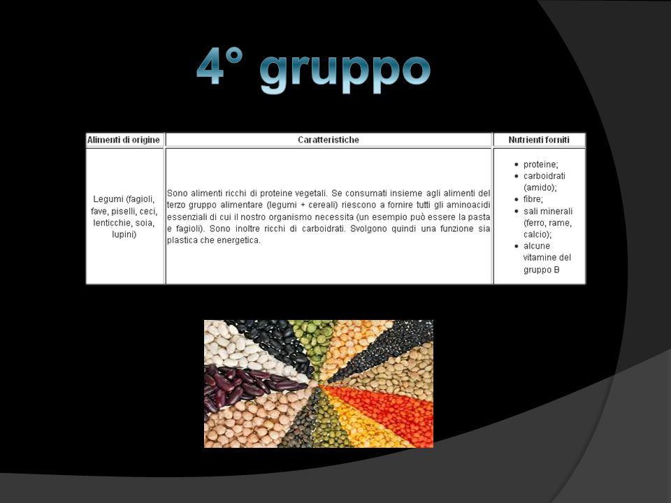 4° gruppo
