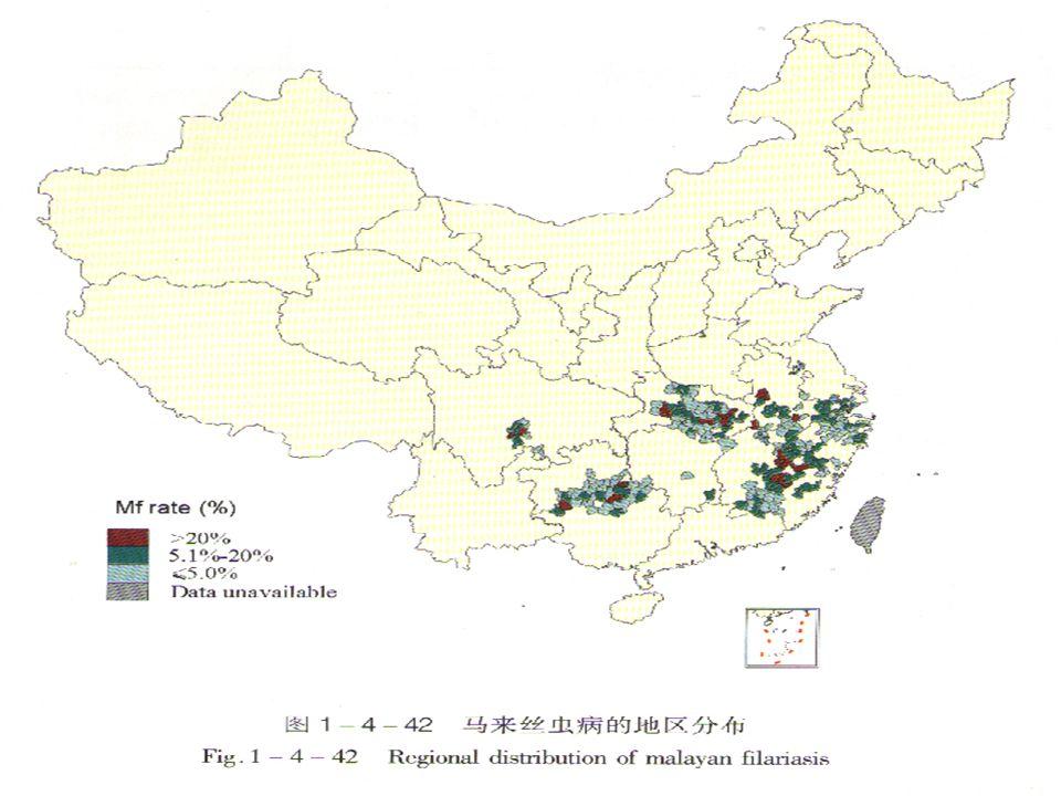 马来丝虫国内分布