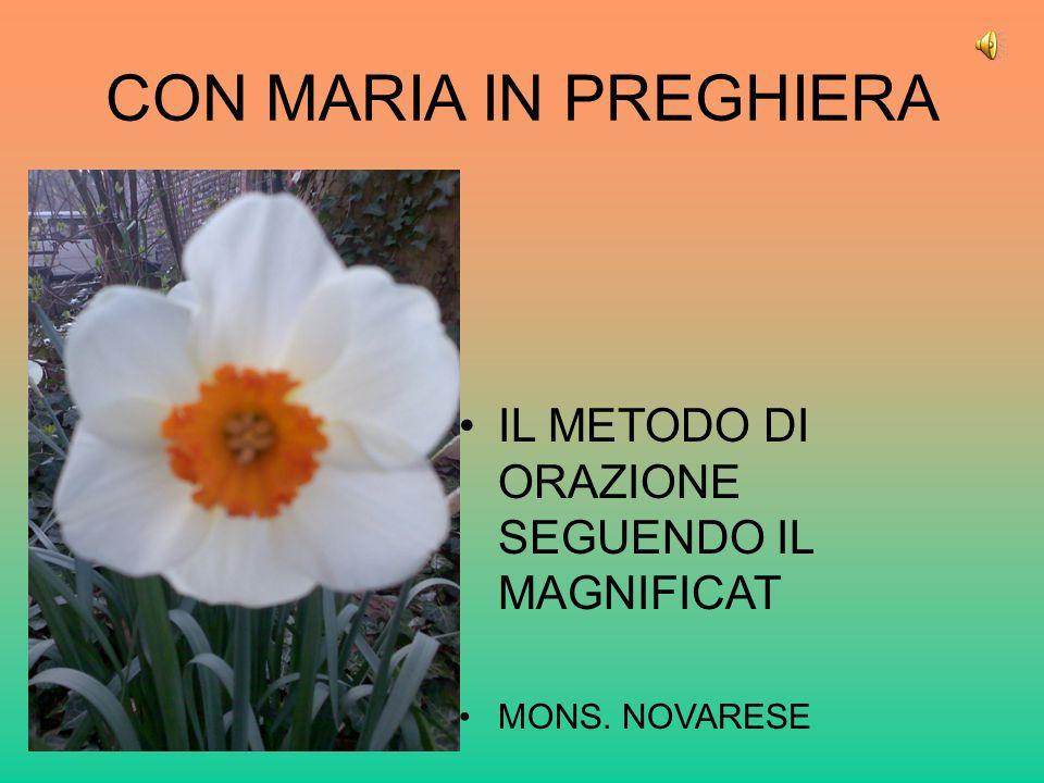 CON MARIA IN PREGHIERA IL METODO DI ORAZIONE SEGUENDO IL MAGNIFICAT