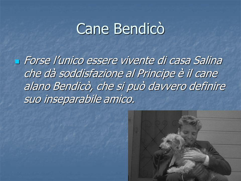 Cane Bendicò