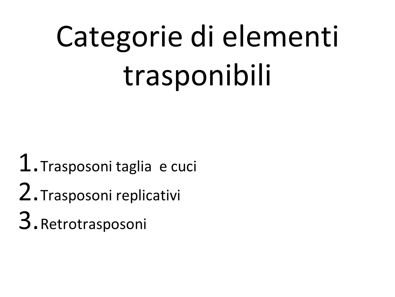 Categorie di elementi trasponibili