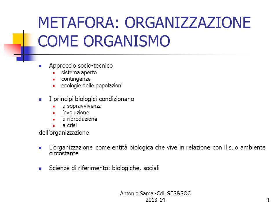 METAFORA: ORGANIZZAZIONE COME ORGANISMO