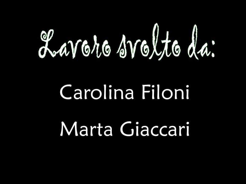 Lavoro svolto da: Carolina Filoni Marta Giaccari