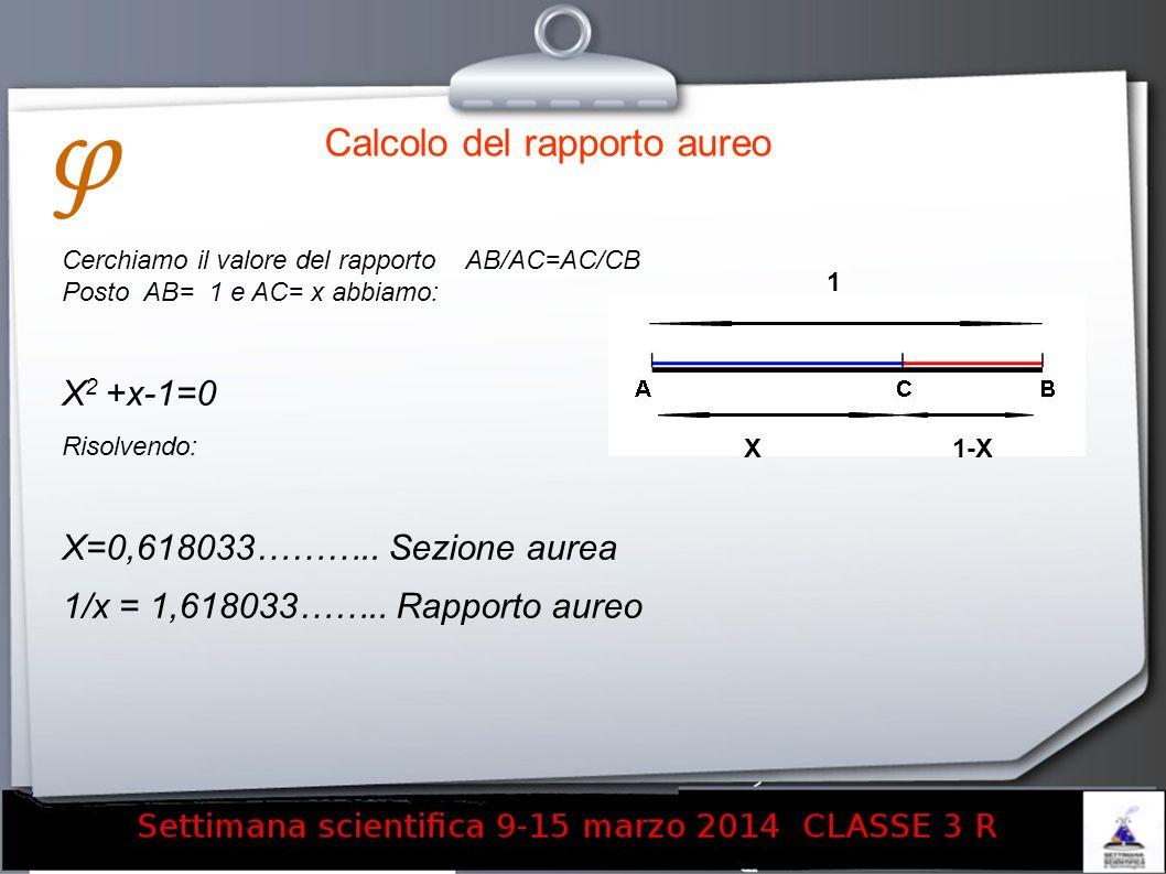 φ Calcolo del rapporto aureo X2 +x-1=0 X=0,618033……….. Sezione aurea