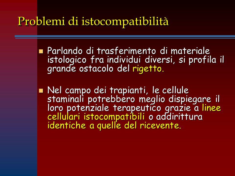 Problemi di istocompatibilità