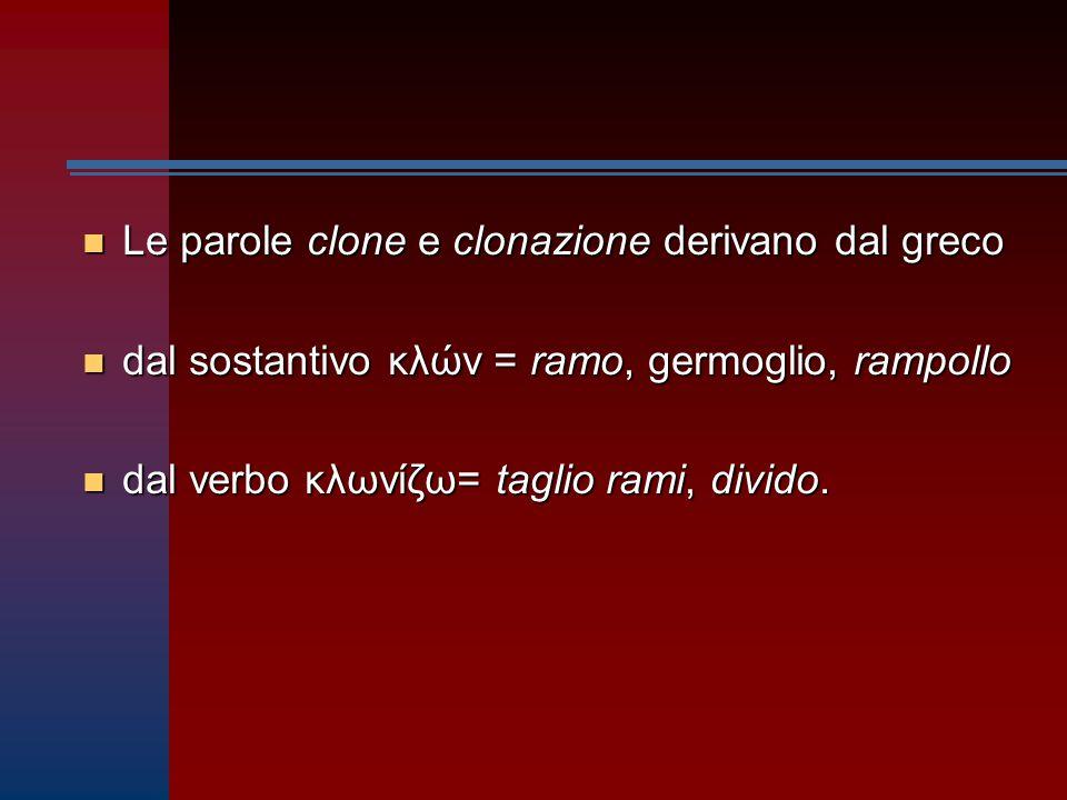 Le parole clone e clonazione derivano dal greco