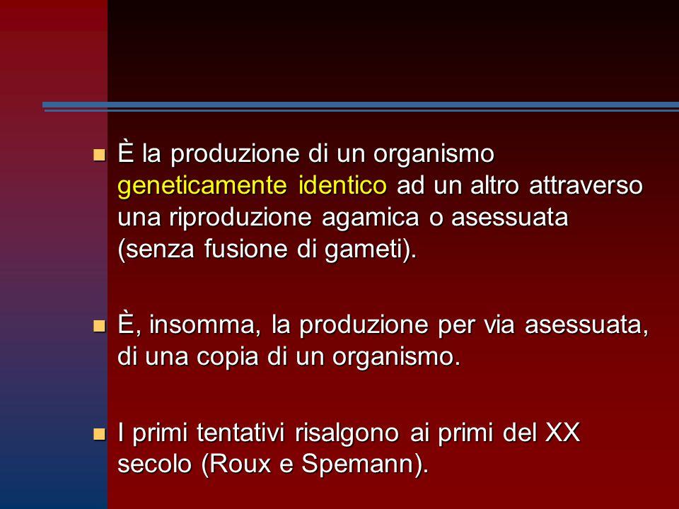 È la produzione di un organismo geneticamente identico ad un altro attraverso una riproduzione agamica o asessuata (senza fusione di gameti).