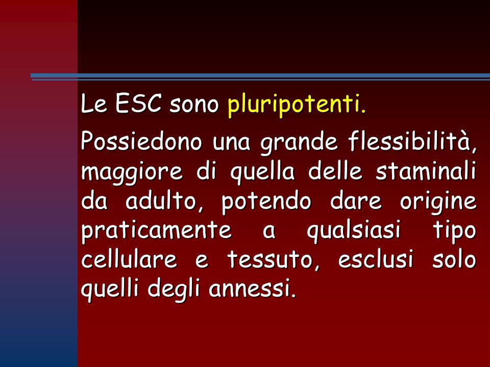 Le ESC sono pluripotenti.