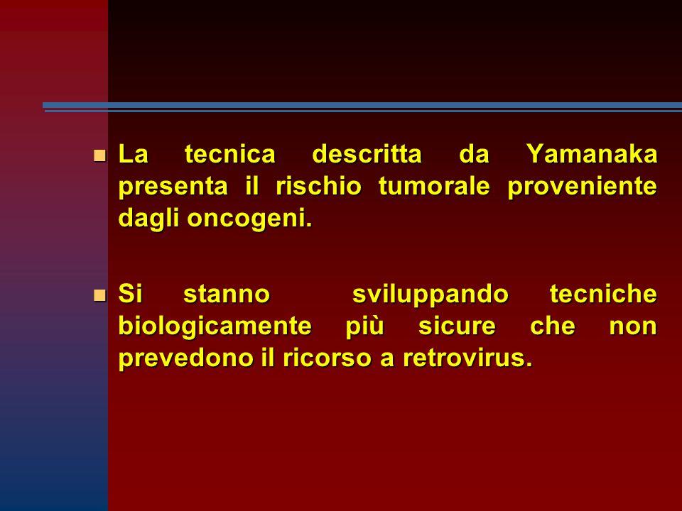 La tecnica descritta da Yamanaka presenta il rischio tumorale proveniente dagli oncogeni.