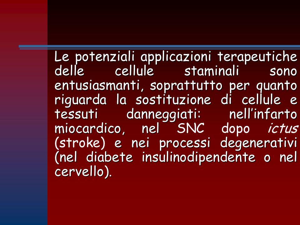 Le potenziali applicazioni terapeutiche delle cellule staminali sono entusiasmanti, soprattutto per quanto riguarda la sostituzione di cellule e tessuti danneggiati: nell'infarto miocardico, nel SNC dopo ictus (stroke) e nei processi degenerativi (nel diabete insulinodipendente o nel cervello).