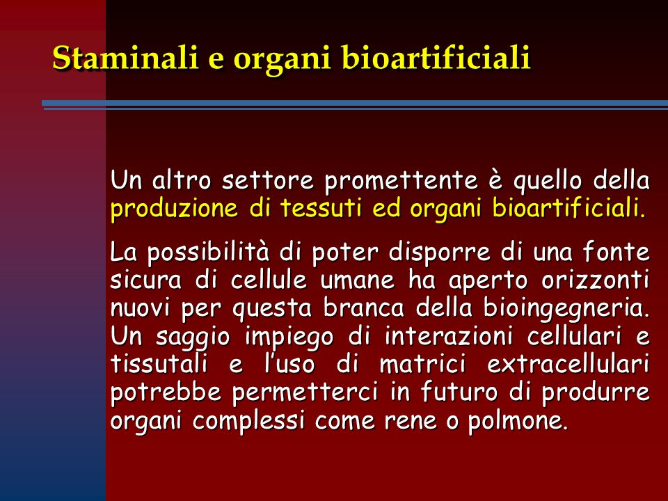 Staminali e organi bioartificiali