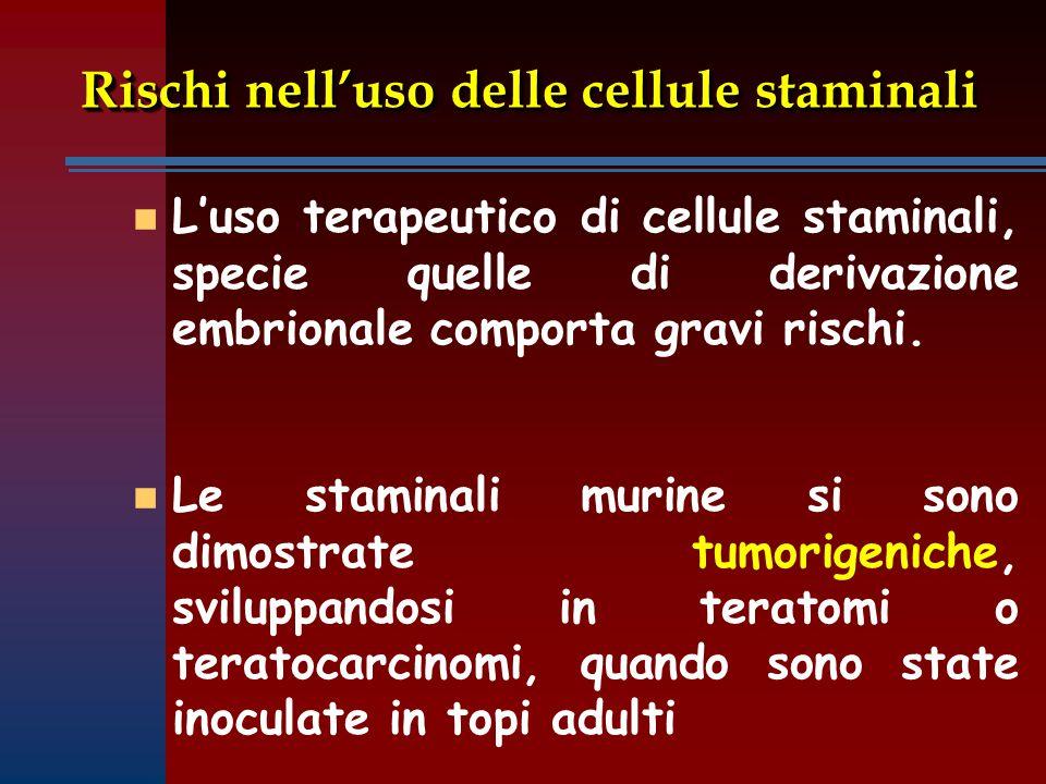 Rischi nell'uso delle cellule staminali