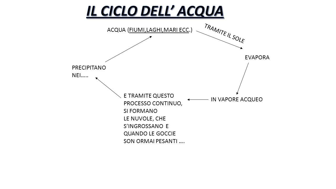 IL CICLO DELL' ACQUA ACQUA (FIUMI,LAGHI,MARI ECC.) TRAMITE IL SOLE