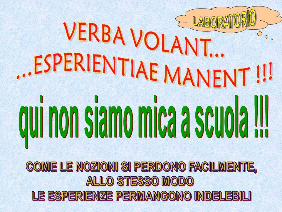 VERBA VOLANT... ...ESPERIENTIAE MANENT !!!