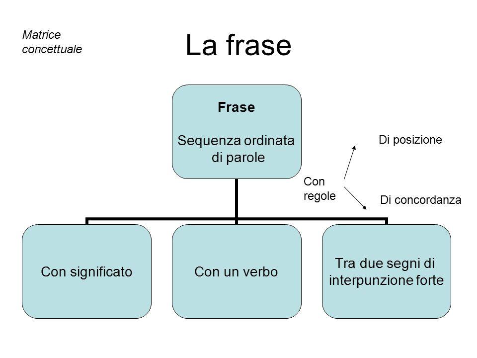 La frase Matrice concettuale Di posizione Con regole Di concordanza