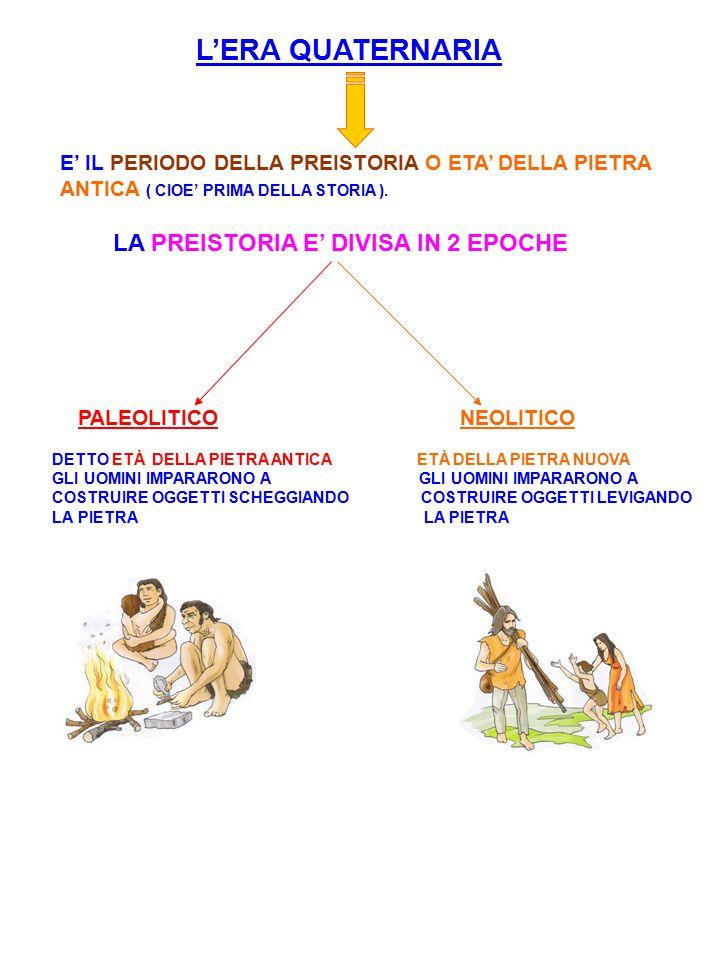 L'ERA QUATERNARIA LA PREISTORIA E' DIVISA IN 2 EPOCHE