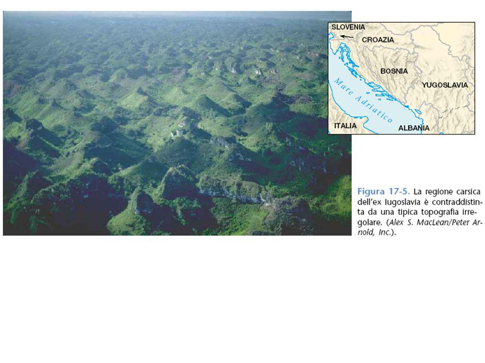 3 L'altopiano del carso. Quest'area in superficie mostra la spettacolarità del fenomeno.