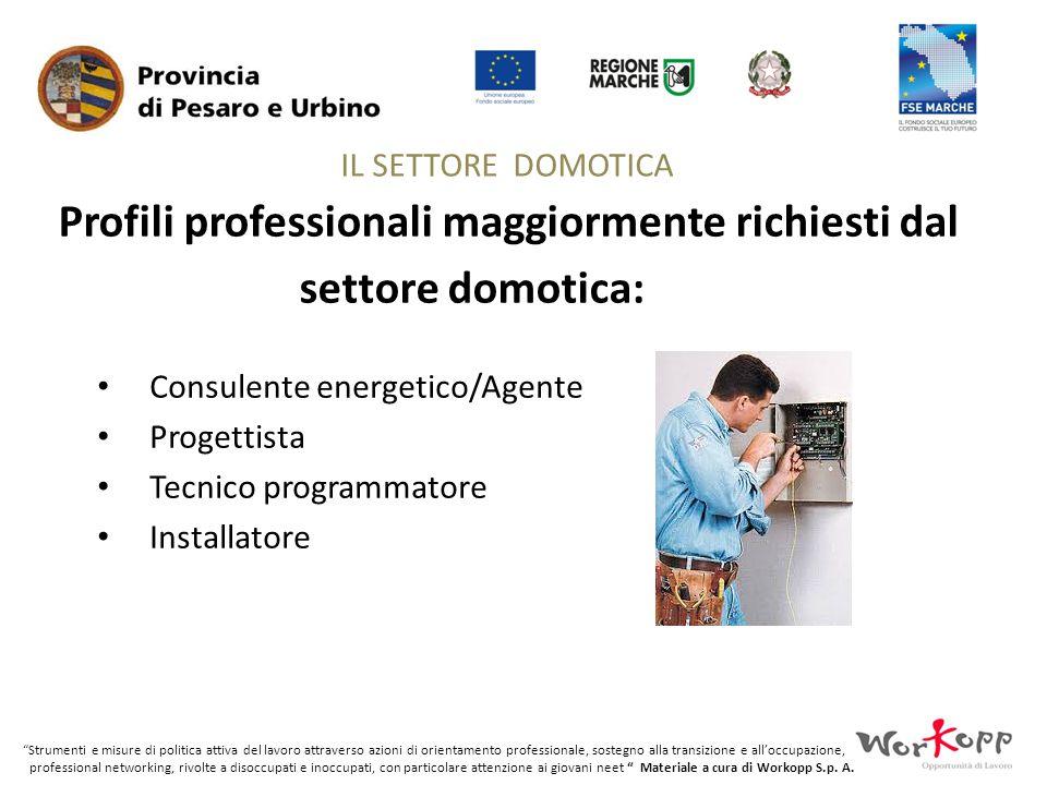 Profili professionali maggiormente richiesti dal settore domotica: